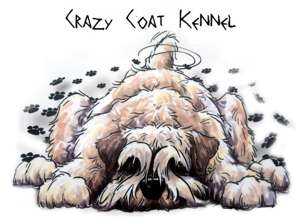 Crazy coat kennel